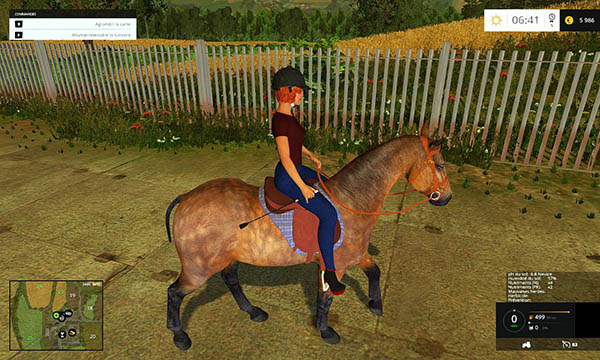 Equestrian woman drivable